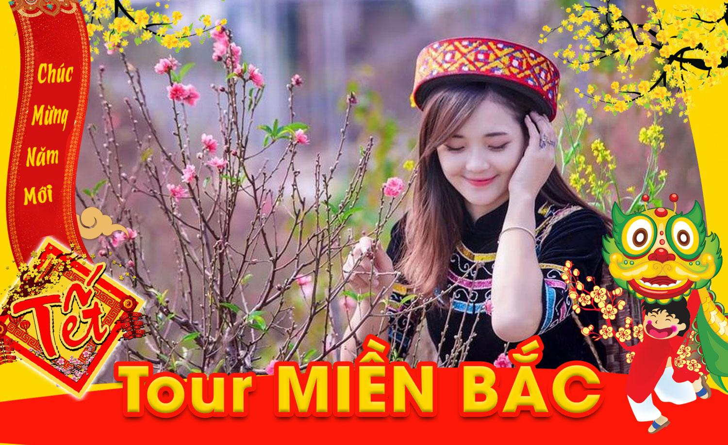 Image result for hạ long ngày tết 2020
